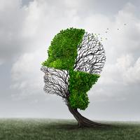 La maladie d'Alzheimer : tout ce que vousavez toujours voulu savoir ….
